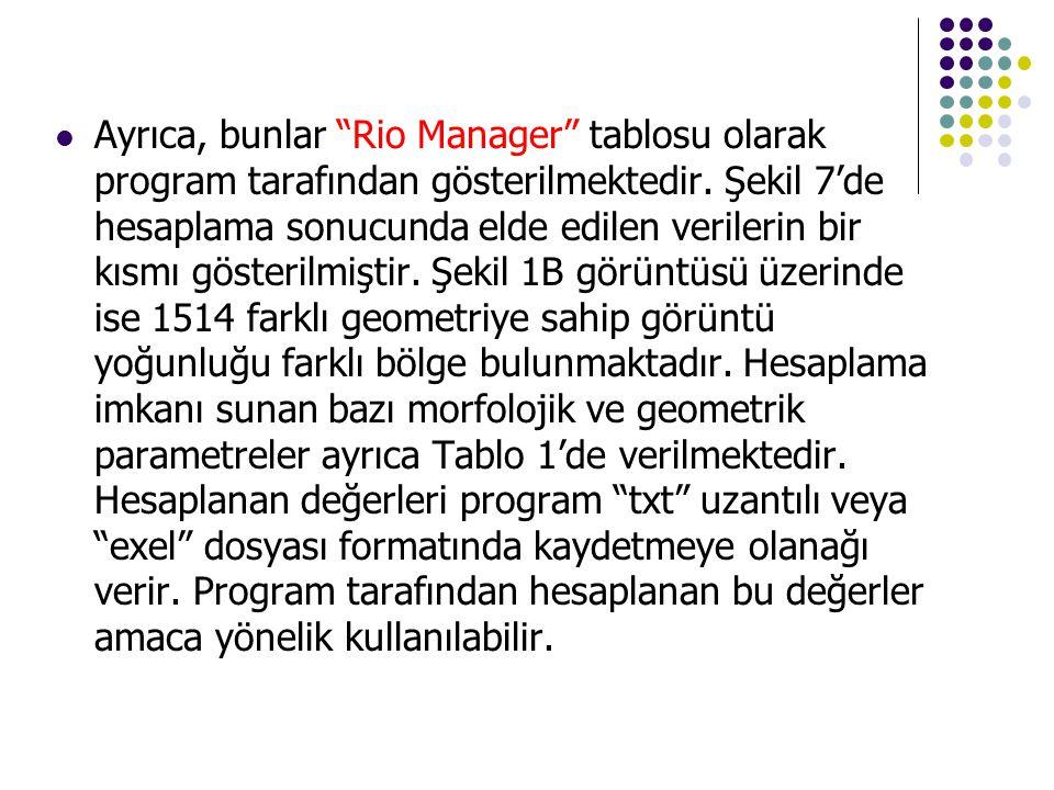 """ Ayrıca, bunlar """"Rio Manager"""" tablosu olarak program tarafından gösterilmektedir. Şekil 7'de hesaplama sonucunda elde edilen verilerin bir kısmı göst"""