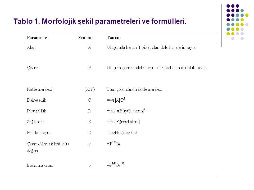 Tablo 1. Morfolojik şekil parametreleri ve formülleri.