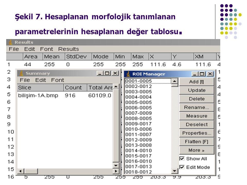 Şekil 7. Hesaplanan morfolojik tanımlanan parametrelerinin hesaplanan değer tablosu.