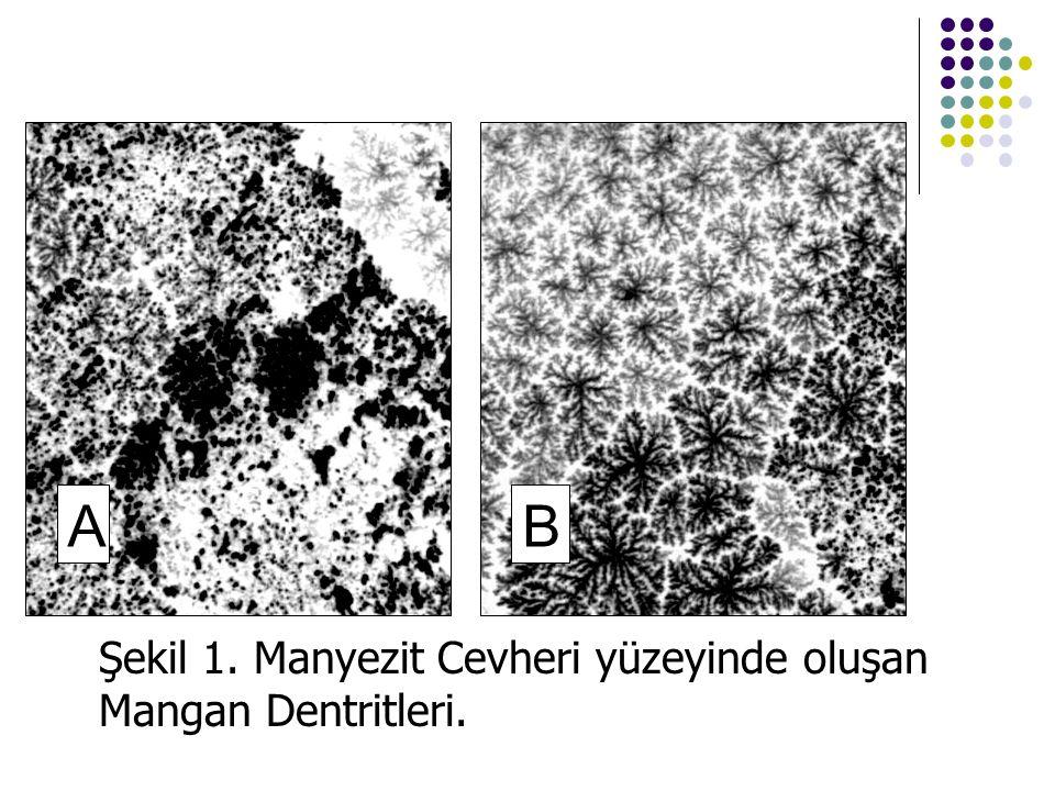 AB Şekil 1. Manyezit Cevheri yüzeyinde oluşan Mangan Dentritleri.
