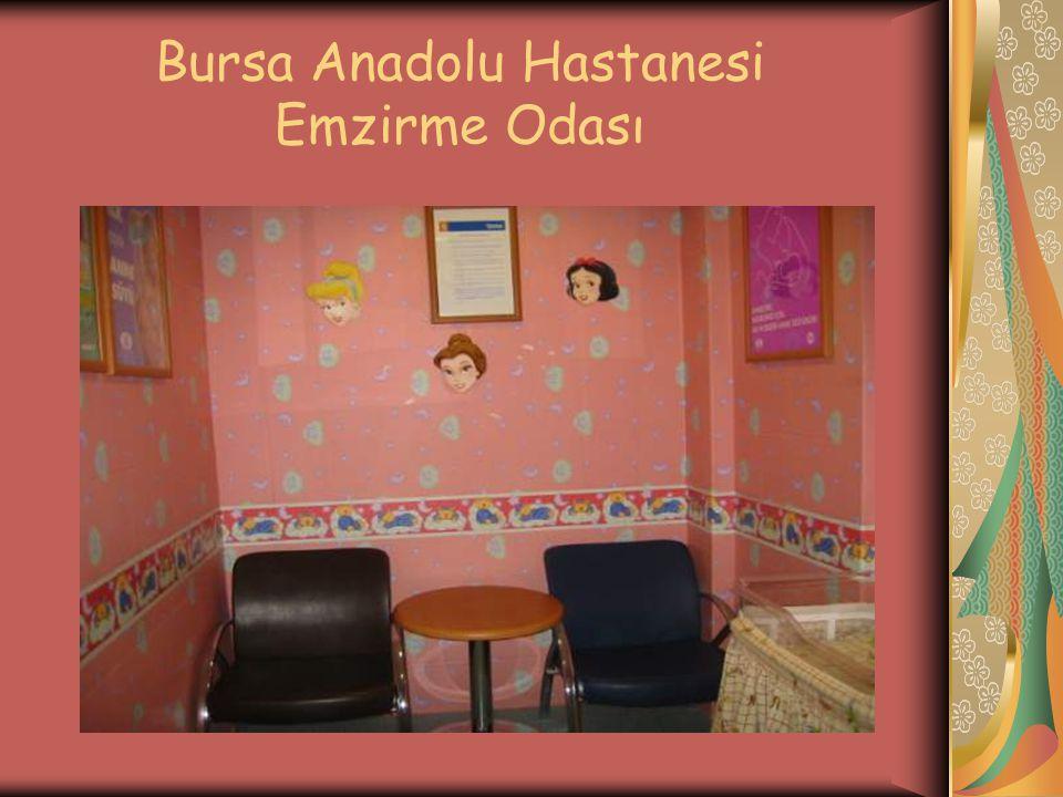 Bursa Anadolu Hastanesi Emzirme Odası