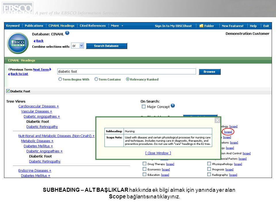 SUBHEADING – ALT BAŞLIKLAR hakkında ek bilgi almak için yanında yer alan Scope bağlantısına tıklayınız.