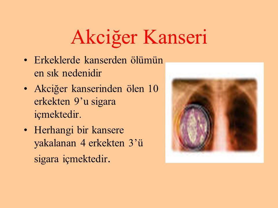 Akciğer Kanseri •Erkeklerde kanserden ölümün en sık nedenidir •Akciğer kanserinden ölen 10 erkekten 9'u sigara içmektedir. •Herhangi bir kansere yakal