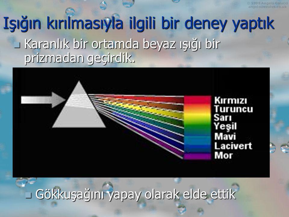 1.Kırmızı 2. Turuncu 3. Sarı 4. Yeşil 5. Mavi 6. Lacivert 7.
