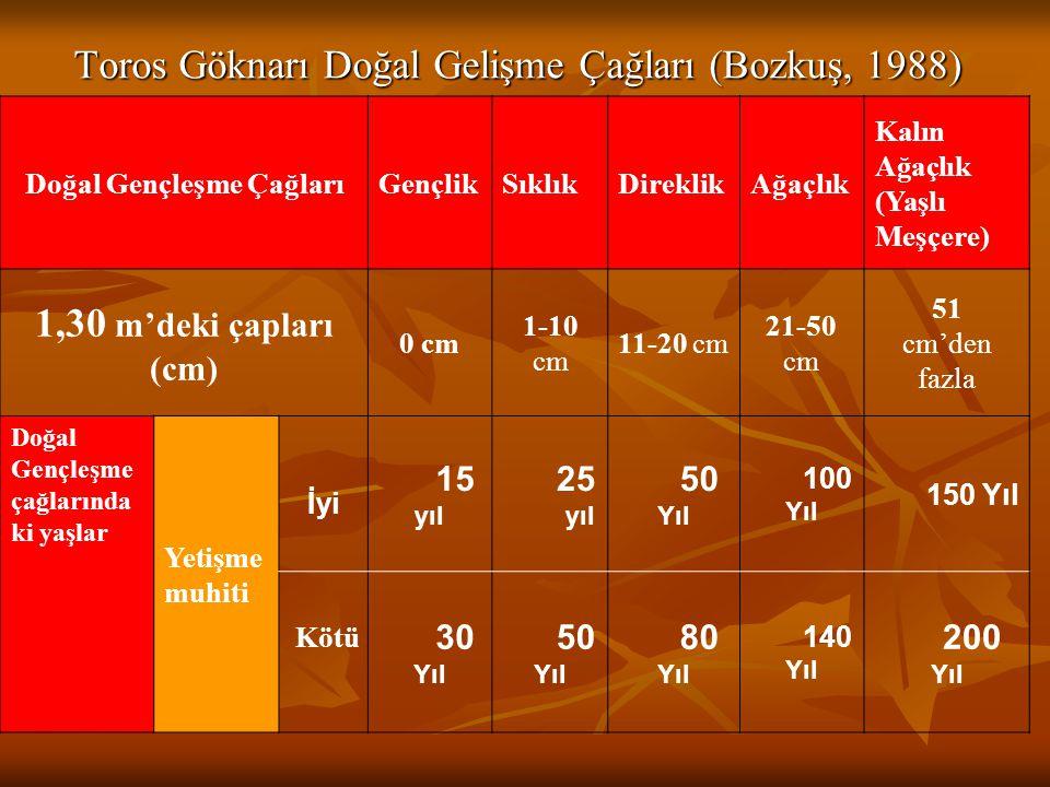 Toros Göknarı Doğal Gelişme Çağları (Bozkuş, 1988) Doğal Gençleşme ÇağlarıGençlikSıklıkDireklikAğaçlık Kalın Ağaçlık (Yaşlı Meşçere) 1,30 m'deki çapla