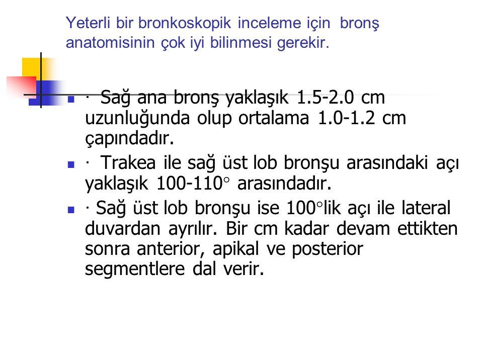 Yeterli bir bronkoskopik inceleme için bronş anatomisinin çok iyi bilinmesi gerekir.  · Sağ ana bronş yaklaşık 1.5-2.0 cm uzunluğunda olup ortalama 1