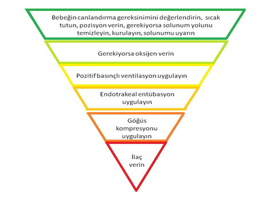 Eğer PBV etkin değil ise düzeltme hareketleri+PBV Bebeğin Canlandırmaya gereksiniminin değerlendirilmesi Doğum Başlangıç Basamakları A Değerlendirme Ventilasyon Değerlendirme B Göğüs Kompresyonu + Ventilasyon C Değerlendirme Adrenalin D 30 sn 45-60 sn Canlandırma Akış Çizelgesi 30 sn