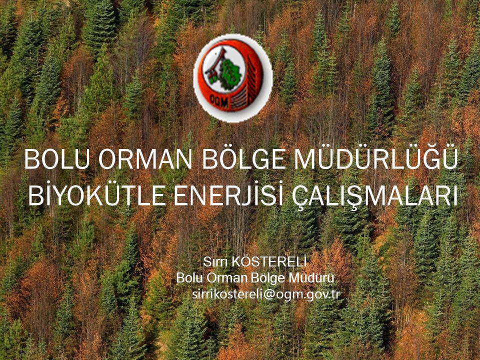 BOLU ORMAN BÖLGE MÜDÜRLÜĞÜ BİYOKÜTLE ENERJİSİ ÇALIŞMALARI Sırrı KÖSTERELİ Bolu Orman Bölge Müdürü sirrikostereli@ogm.gov.tr