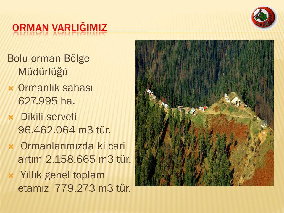 Bolu orman Bölge Müdürlüğü  Ormanlık sahası 627.995 ha.  Dikili serveti 96.462.064 m3 tür.  Ormanlarımızda ki cari artım 2.158.665 m3 tür.  Yıllık