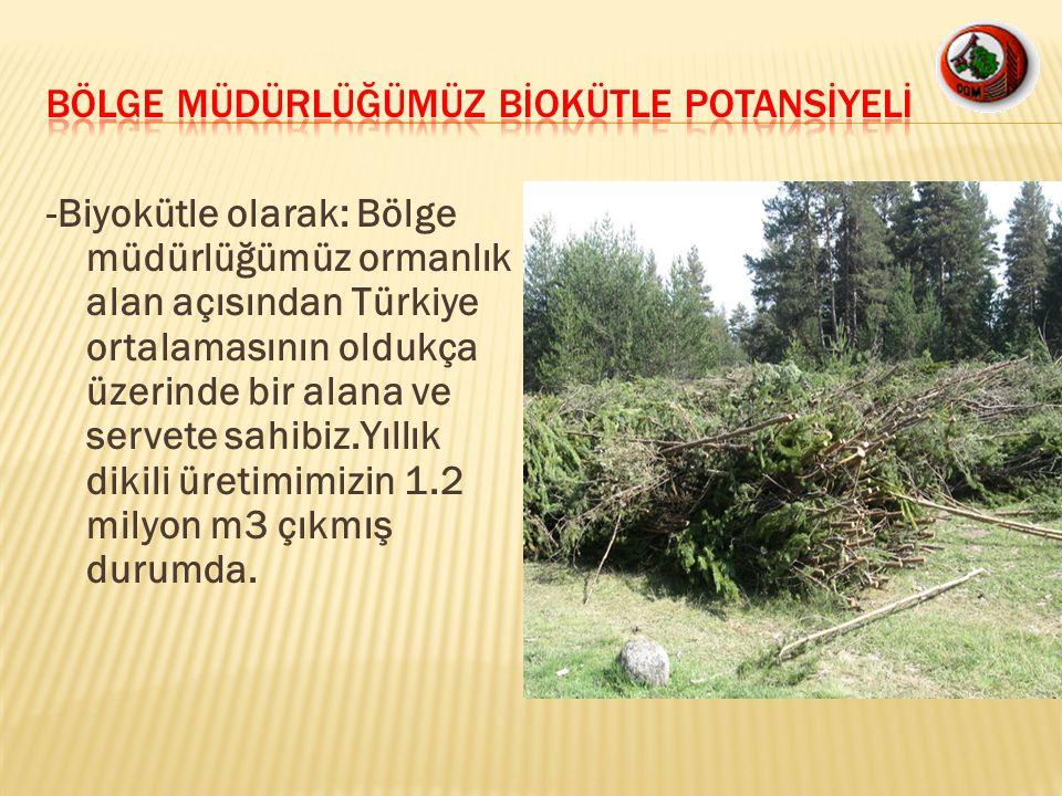 -Biyokütle olarak: Bölge müdürlüğümüz ormanlık alan açısından Türkiye ortalamasının oldukça üzerinde bir alana ve servete sahibiz.Yıllık dikili üretim