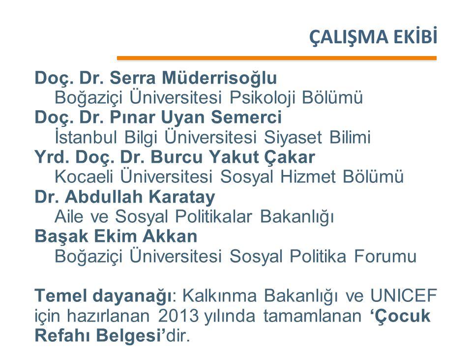 ÇALIŞMA EKİBİ Doç. Dr. Serra Müderrisoğlu Boğaziçi Üniversitesi Psikoloji Bölümü Doç. Dr. Pınar Uyan Semerci İstanbul Bilgi Üniversitesi Siyaset Bilim