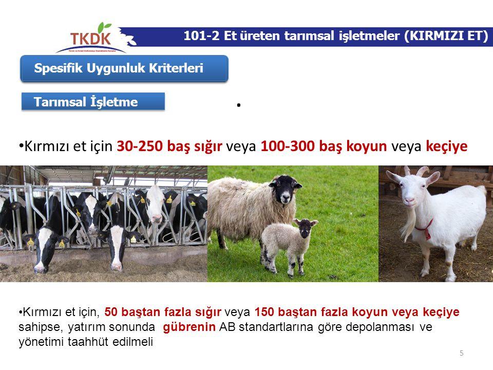 5 Spesifik Uygunluk Kriterleri Tarımsal İşletme • Kırmızı et için 30-250 baş sığır veya 100-300 baş koyun veya keçiye •Kırmızı et için, 50 baştan fazl