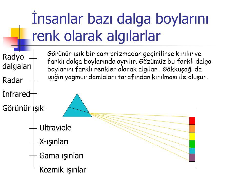 İnsanlar bazı dalga boylarını renk olarak algılarlar Görünür ışık bir cam prizmadan geçirilirse kırılır ve farklı dalga boylarında ayrılır. Gözümüz bu