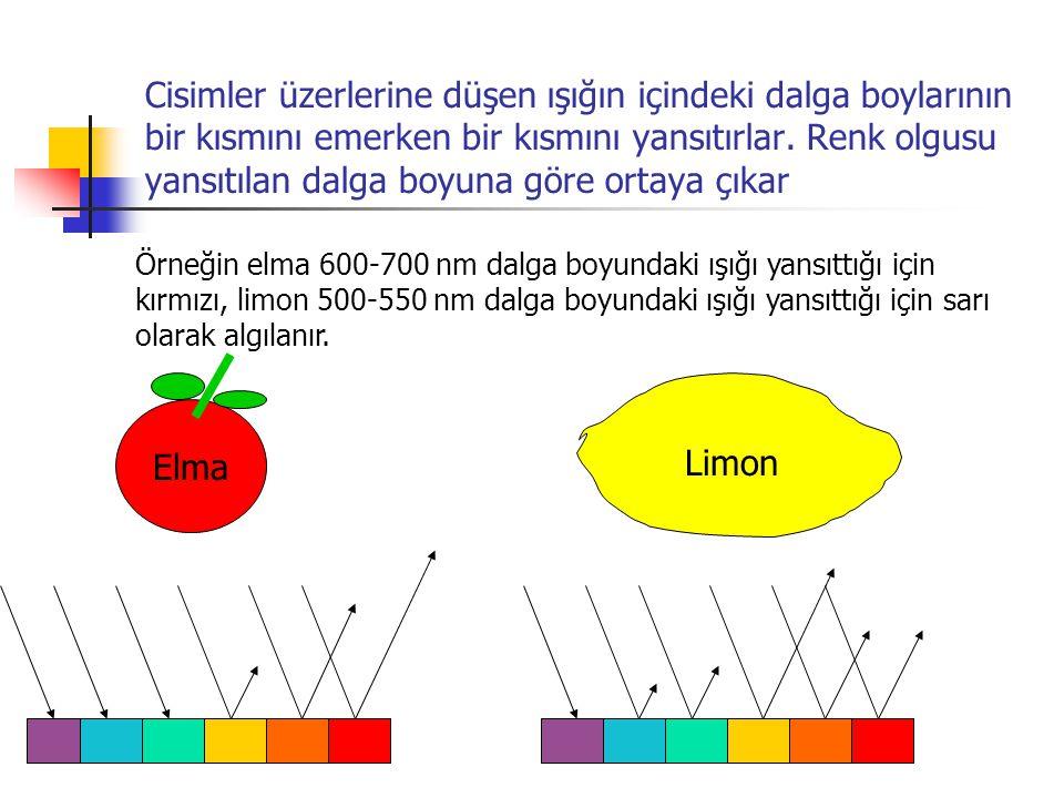 Cisimler üzerlerine düşen ışığın içindeki dalga boylarının bir kısmını emerken bir kısmını yansıtırlar. Renk olgusu yansıtılan dalga boyuna göre ortay