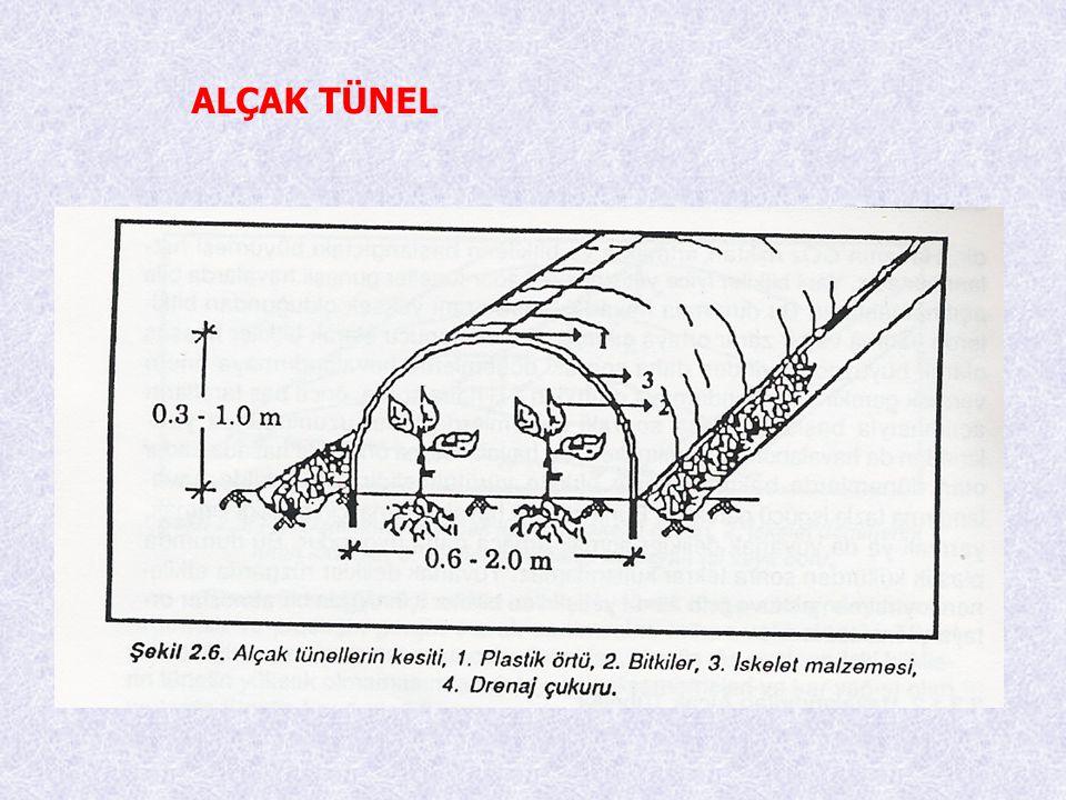 YÜKSEK TÜNEL Yüksek tüneller alçak tünellerle seralar arsında geçiş şekli olarak ortaya çıkmaktadır.