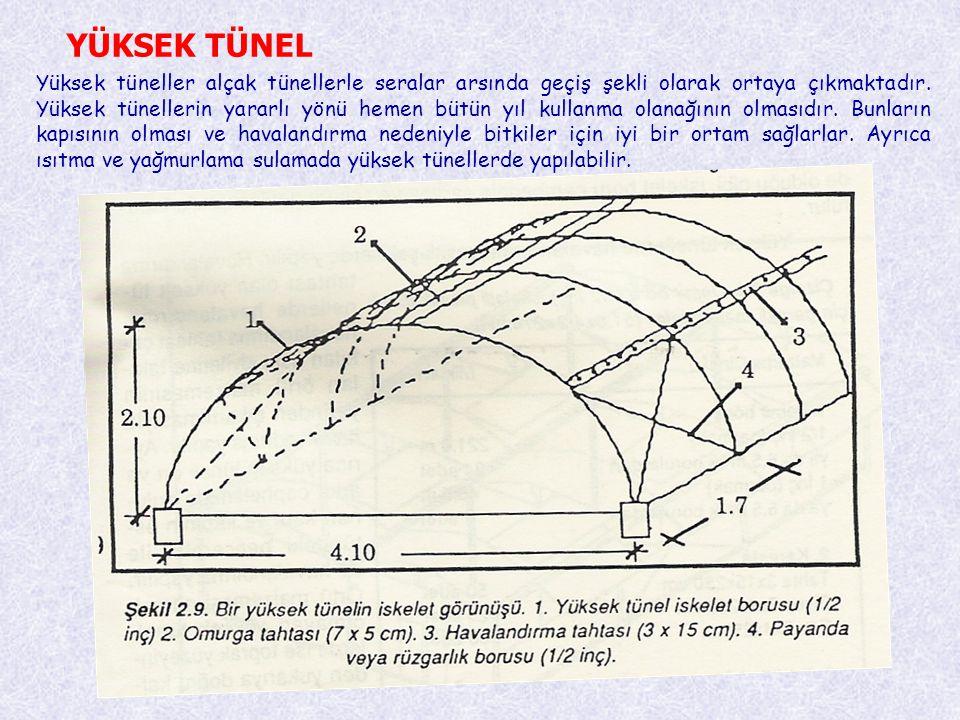 YÜKSEK TÜNEL Yüksek tüneller alçak tünellerle seralar arsında geçiş şekli olarak ortaya çıkmaktadır. Yüksek tünellerin yararlı yönü hemen bütün yıl ku