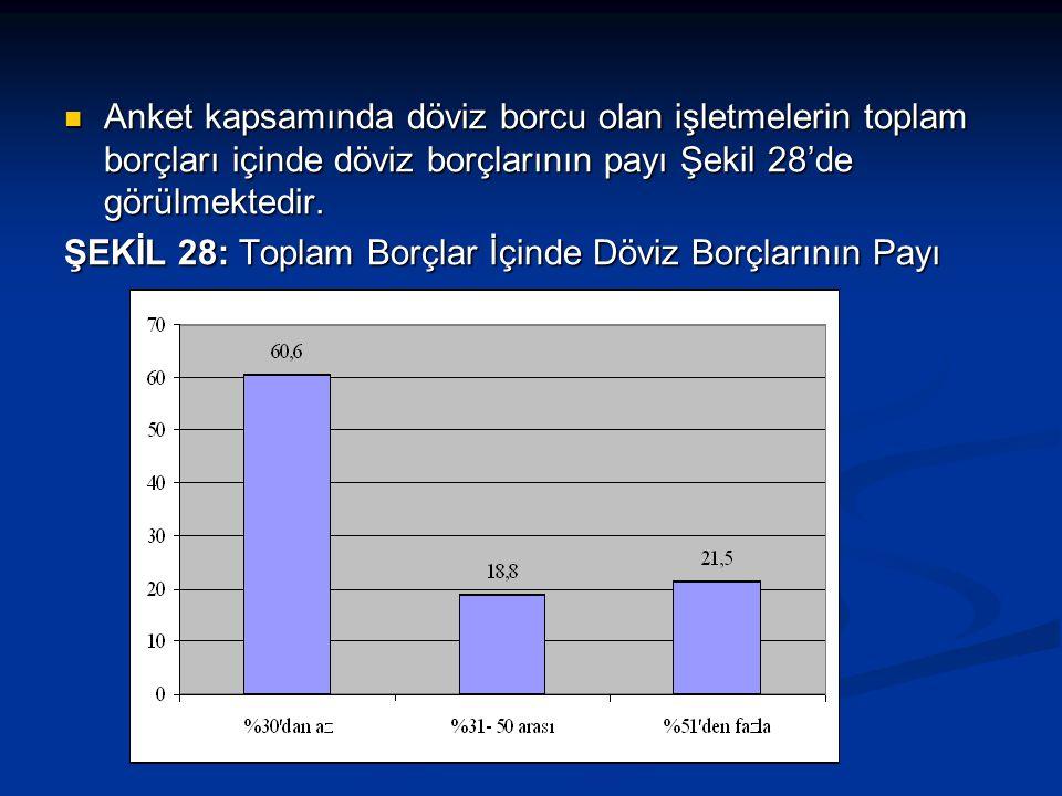  Anket kapsamında döviz borcu olan işletmelerin toplam borçları içinde döviz borçlarının payı Şekil 28'de görülmektedir.