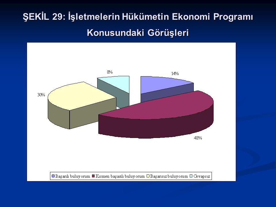 ŞEKİL 29: İşletmelerin Hükümetin Ekonomi Programı Konusundaki Görüşleri