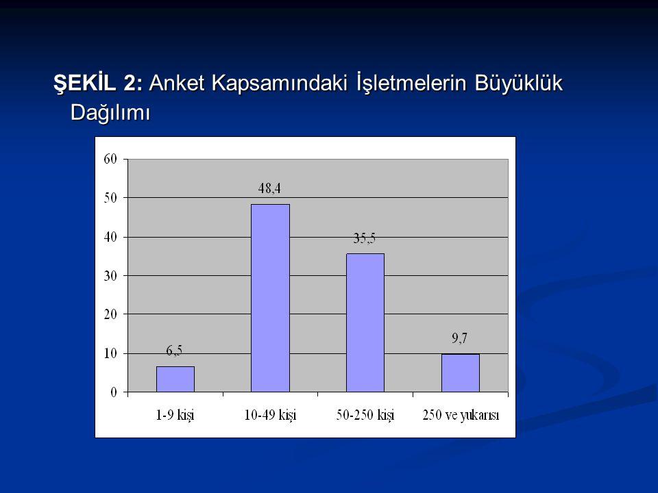 TÜRKİYE'NİN EKONOMİK SORUNLARININ ÖNEM DERECELERİ VE SORUNLARA İLİŞKİN BEKLENTİLER  Anket kapsamındaki işletmelere göre, Türkiye'nin en önemli sorunu cari açıktır.