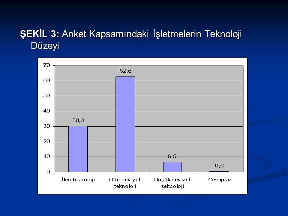 ŞEKİL 3: Anket Kapsamındaki İşletmelerin Teknoloji Düzeyi