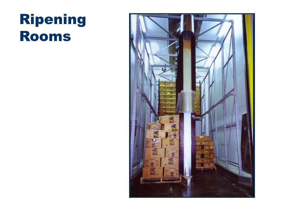 Ripening Rooms