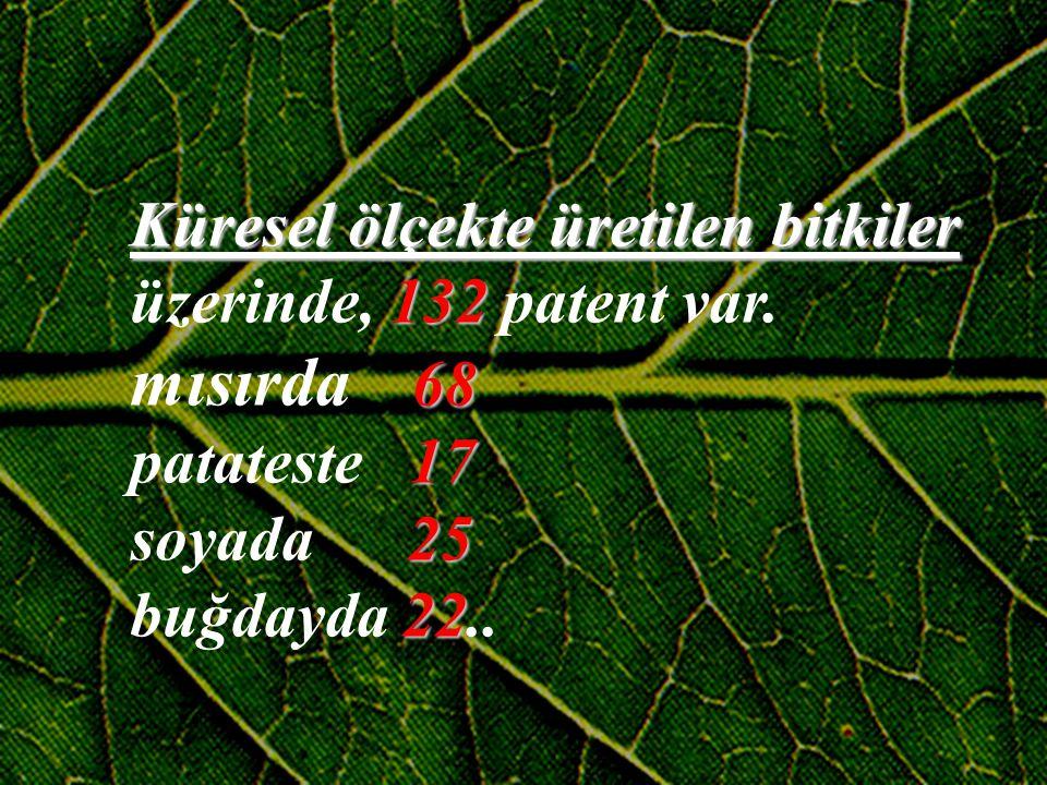 Küresel ölçekte üretilen bitkiler üzerinde, 1 11 132 patent var. mısırda 6 8 patateste 1 7 soyada 2 5 buğdayda 2 22 22..