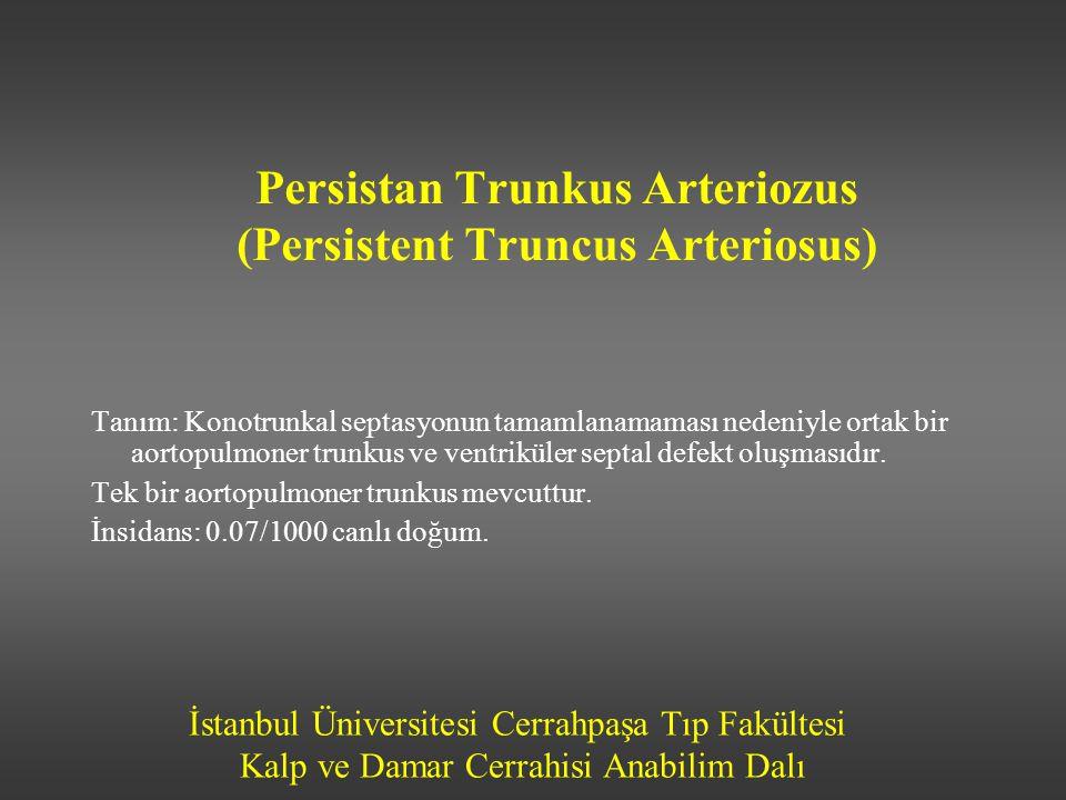 İstanbul Üniversitesi Cerrahpaşa Tıp Fakültesi Kalp ve Damar Cerrahisi Anabilim Dalı Persistan Trunkus Arteriozus (Persistent Truncus Arteriosus) Tanı