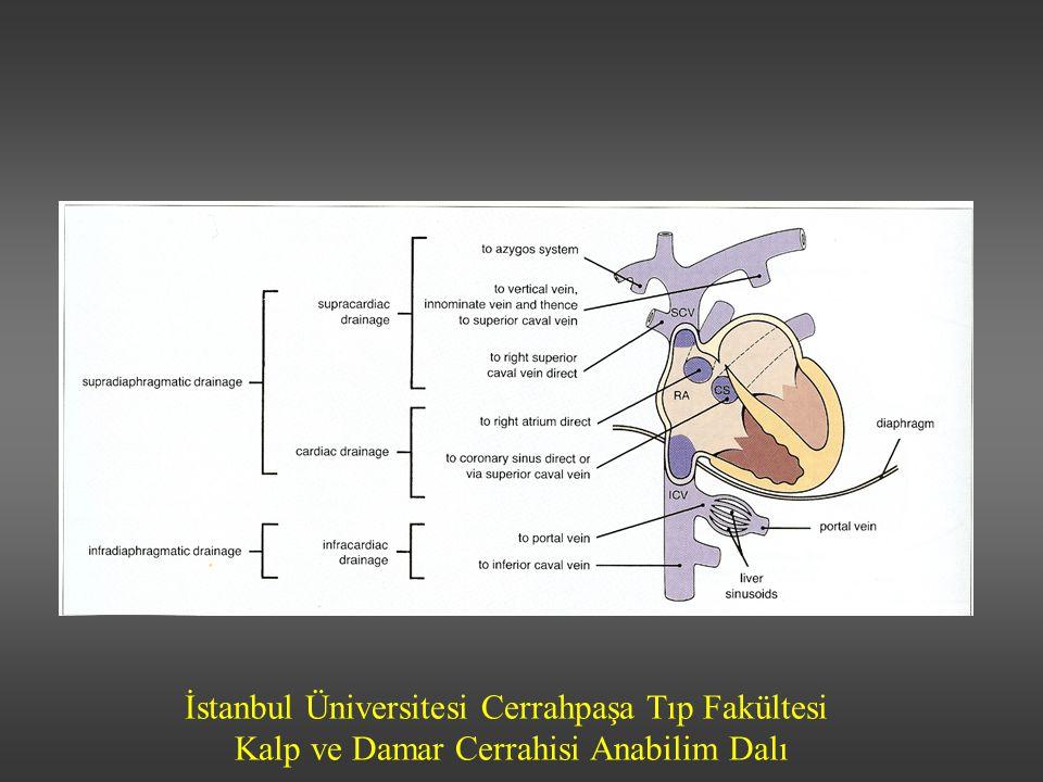 İstanbul Üniversitesi Cerrahpaşa Tıp Fakültesi Kalp ve Damar Cerrahisi Anabilim Dalı