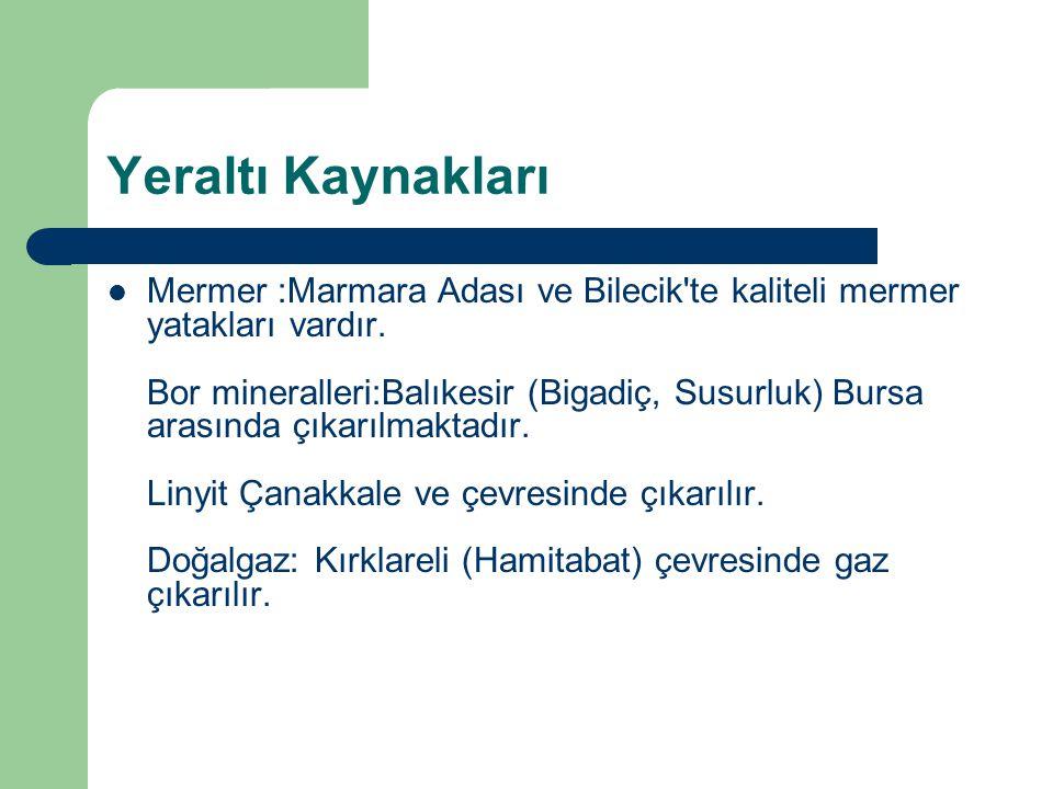 Yeraltı Kaynakları  Mermer :Marmara Adası ve Bilecik'te kaliteli mermer yatakları vardır. Bor mineralleri:Balıkesir (Bigadiç, Susurluk) Bursa arasınd