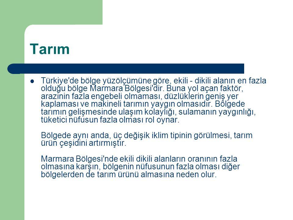 Tarım  Türkiye'de bölge yüzölçümüne göre, ekili - dikili alanın en fazla olduğu bölge Marmara Bölgesi'dir. Buna yol açan faktör, arazinin fazla engeb