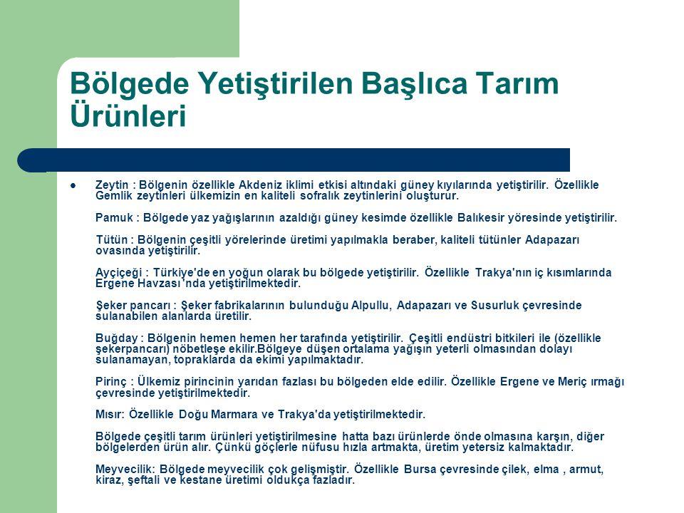 Bölgede Yetiştirilen Başlıca Tarım Ürünleri  Zeytin : Bölgenin özellikle Akdeniz iklimi etkisi altındaki güney kıyılarında yetiştirilir. Özellikle Ge