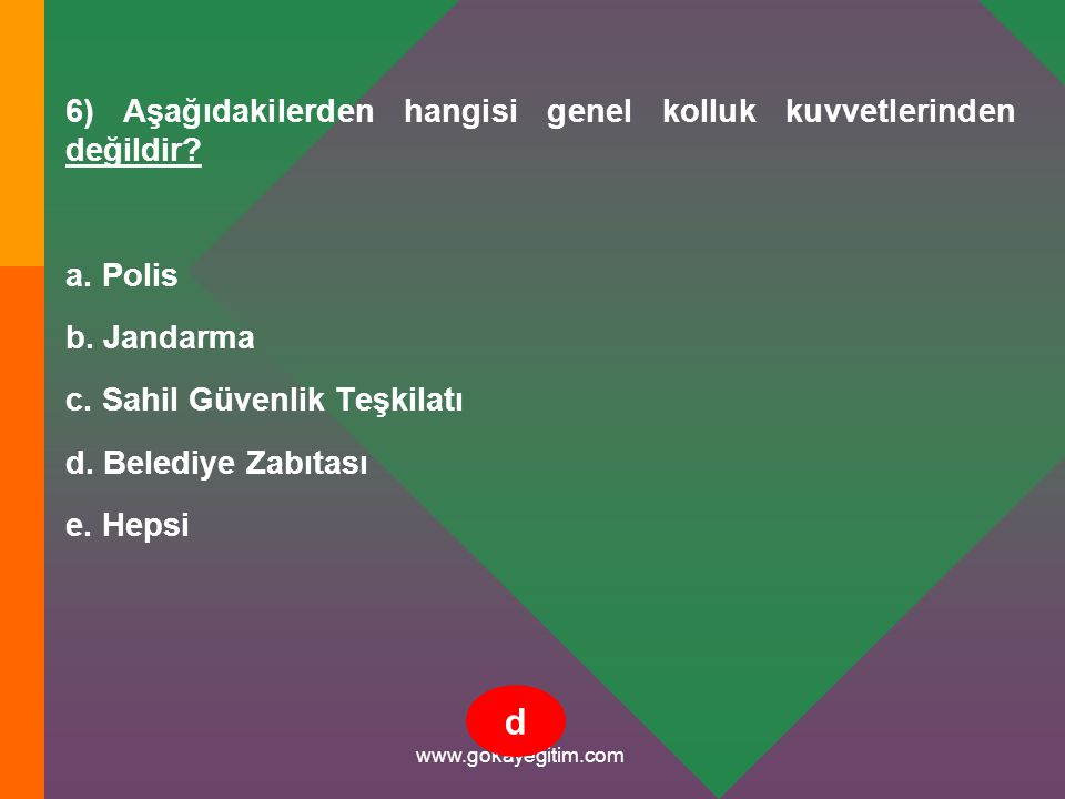 www.gokayegitim.com 87) Toplumsal olaylara müdahale sırasında göz yaşartıcı maddeye maruz kalan kişilerde geçici süre ile aşağıdaki belirtilerden hangisi görülür.