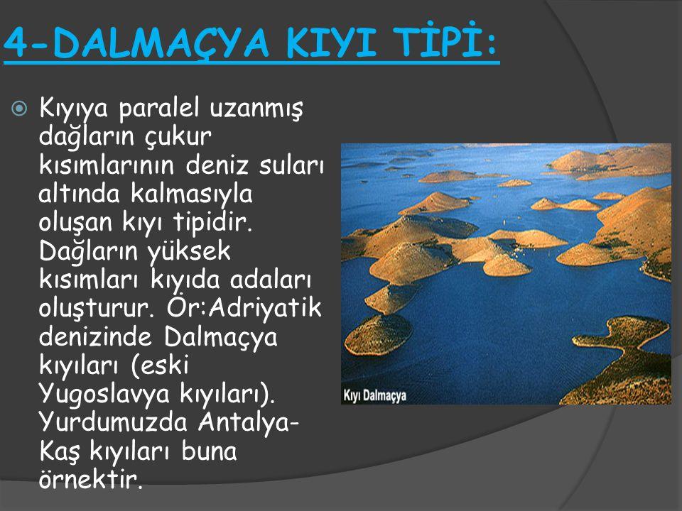 4-DALMAÇYA KIYI TİPİ:  Kıyıya paralel uzanmış dağların çukur kısımlarının deniz suları altında kalmasıyla oluşan kıyı tipidir. Dağların yüksek kısıml