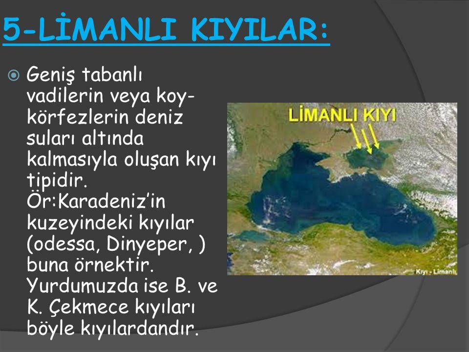 5-LİMANLI KIYILAR:  Geniş tabanlı vadilerin veya koy- körfezlerin deniz suları altında kalmasıyla oluşan kıyı tipidir. Ör:Karadeniz'in kuzeyindeki kı