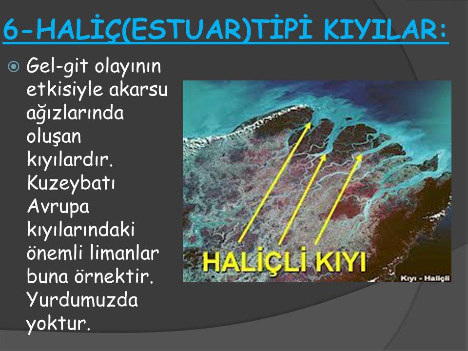 6-HALİÇ(ESTUAR)TİPİ KIYILAR: GGel-git olayının etkisiyle akarsu ağızlarında oluşan kıyılardır. Kuzeybatı Avrupa kıyılarındaki önemli limanlar buna ö