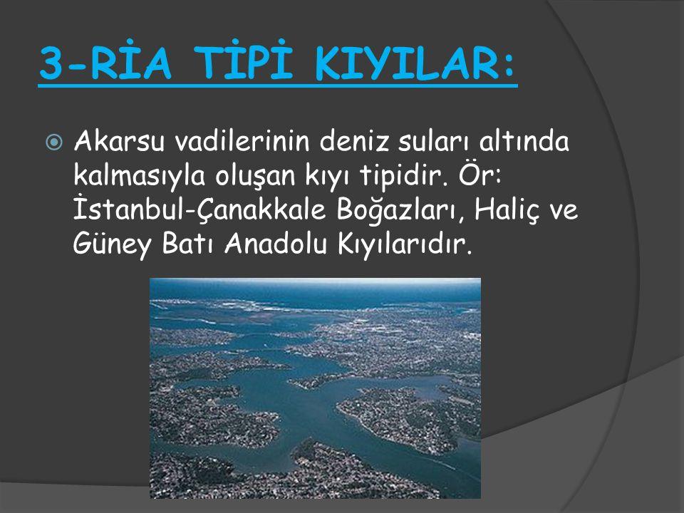 3-RİA TİPİ KIYILAR: AAkarsu vadilerinin deniz suları altında kalmasıyla oluşan kıyı tipidir. Ör: İstanbul-Çanakkale Boğazları, Haliç ve Güney Batı A