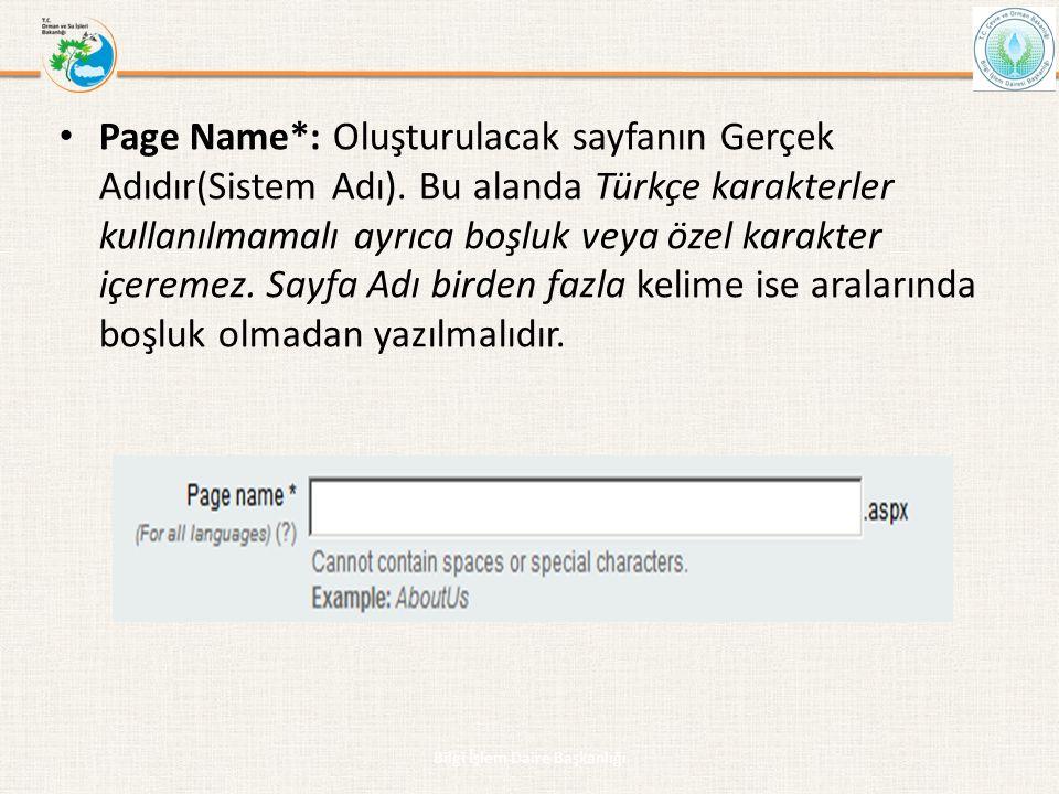 • Page Name*: Oluşturulacak sayfanın Gerçek Adıdır(Sistem Adı). Bu alanda Türkçe karakterler kullanılmamalı ayrıca boşluk veya özel karakter içeremez.