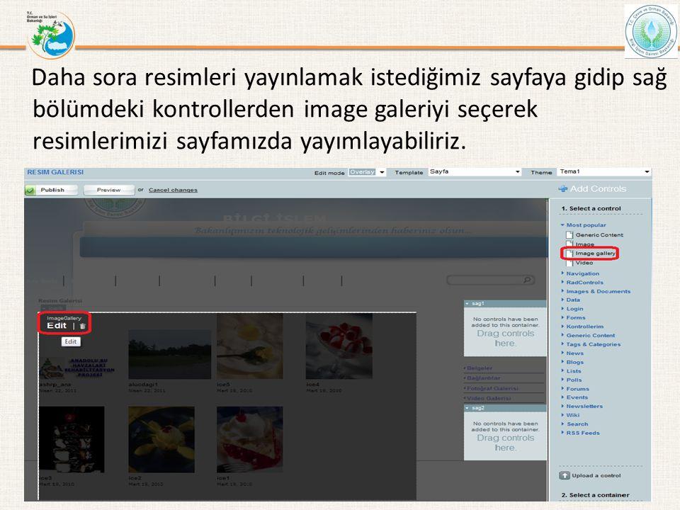 Daha sora resimleri yayınlamak istediğimiz sayfaya gidip sağ bölümdeki kontrollerden image galeriyi seçerek resimlerimizi sayfamızda yayımlayabiliriz.