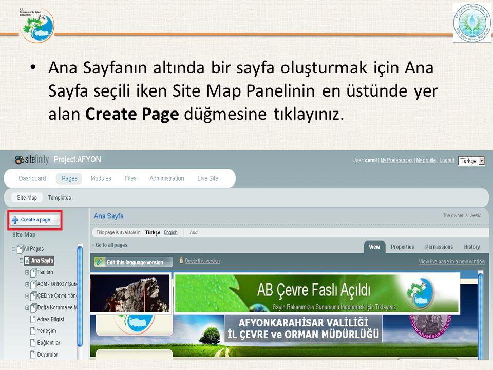• Ana Sayfanın altında bir sayfa oluşturmak için Ana Sayfa seçili iken Site Map Panelinin en üstünde yer alan Create Page düğmesine tıklayınız. Bilgi