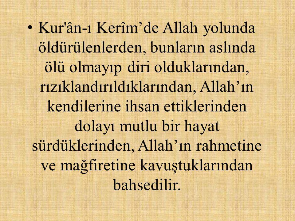 • Kur'ân-ı Kerîm'de Allah yolunda öldürülenlerden, bunların aslında ölü olmayıp diri olduklarından, rızıklandırıldıklarından, Allah'ın kendilerine ihs