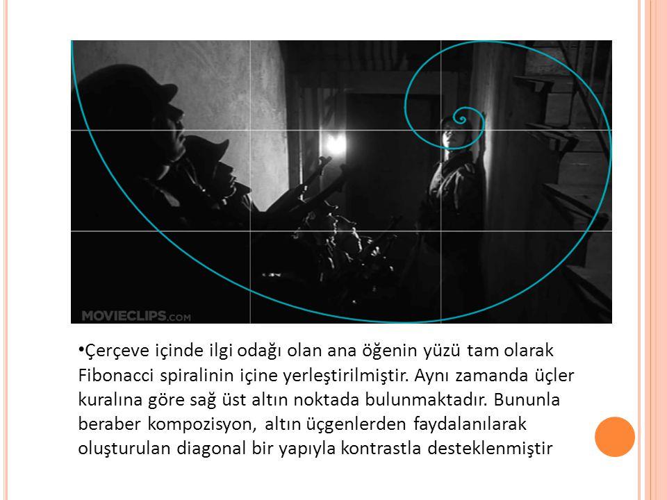 • Çerçeve içinde ilgi odağı olan ana öğenin yüzü tam olarak Fibonacci spiralinin içine yerleştirilmiştir. Aynı zamanda üçler kuralına göre sağ üst alt