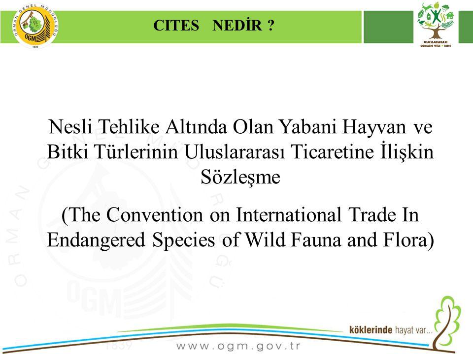 16/12/2010 Kurumsal Kimlik 2 CITES NEDİR ? Nesli Tehlike Altında Olan Yabani Hayvan ve Bitki Türlerinin Uluslararası Ticaretine İlişkin Sözleşme (The