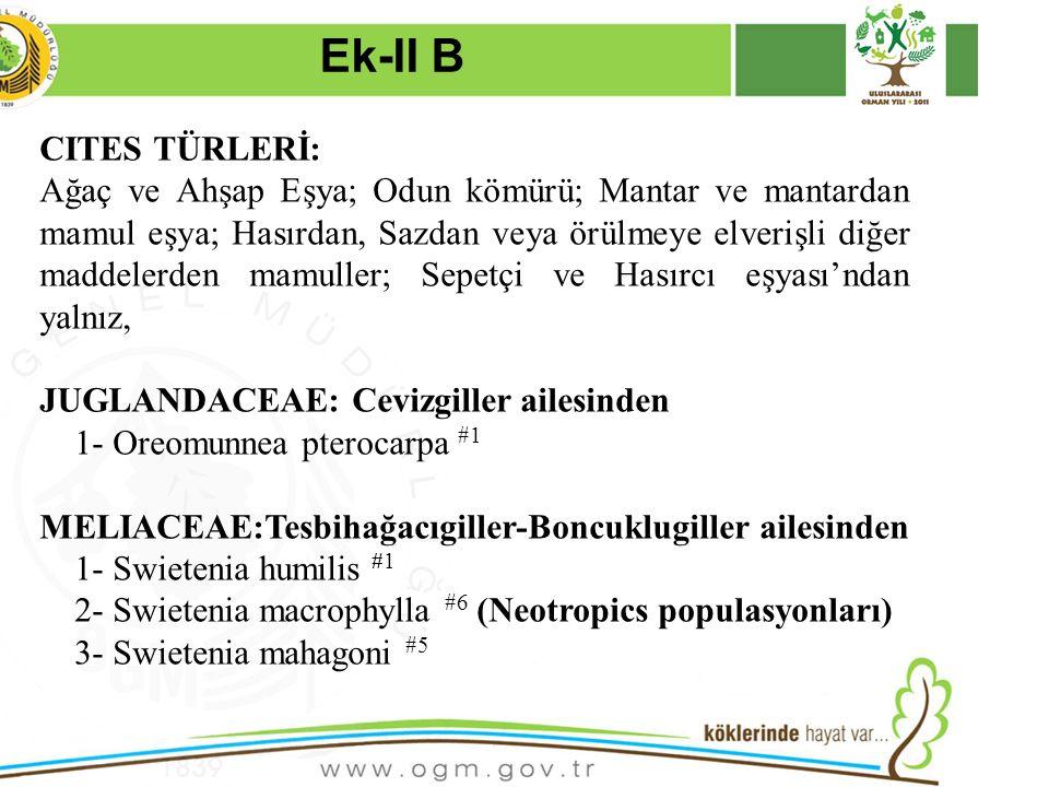 16/12/2010 Kurumsal Kimlik 24 CITES TÜRLERİ: Ağaç ve Ahşap Eşya; Odun kömürü; Mantar ve mantardan mamul eşya; Hasırdan, Sazdan veya örülmeye elverişli diğer maddelerden mamuller; Sepetçi ve Hasırcı eşyası'ndan yalnız, JUGLANDACEAE: Cevizgiller ailesinden 1- Oreomunnea pterocarpa #1 MELIACEAE:Tesbihağacıgiller-Boncuklugiller ailesinden 1- Swietenia humilis #1 2- Swietenia macrophylla #6 (Neotropics populasyonları) 3- Swietenia mahagoni #5 Ek-II B