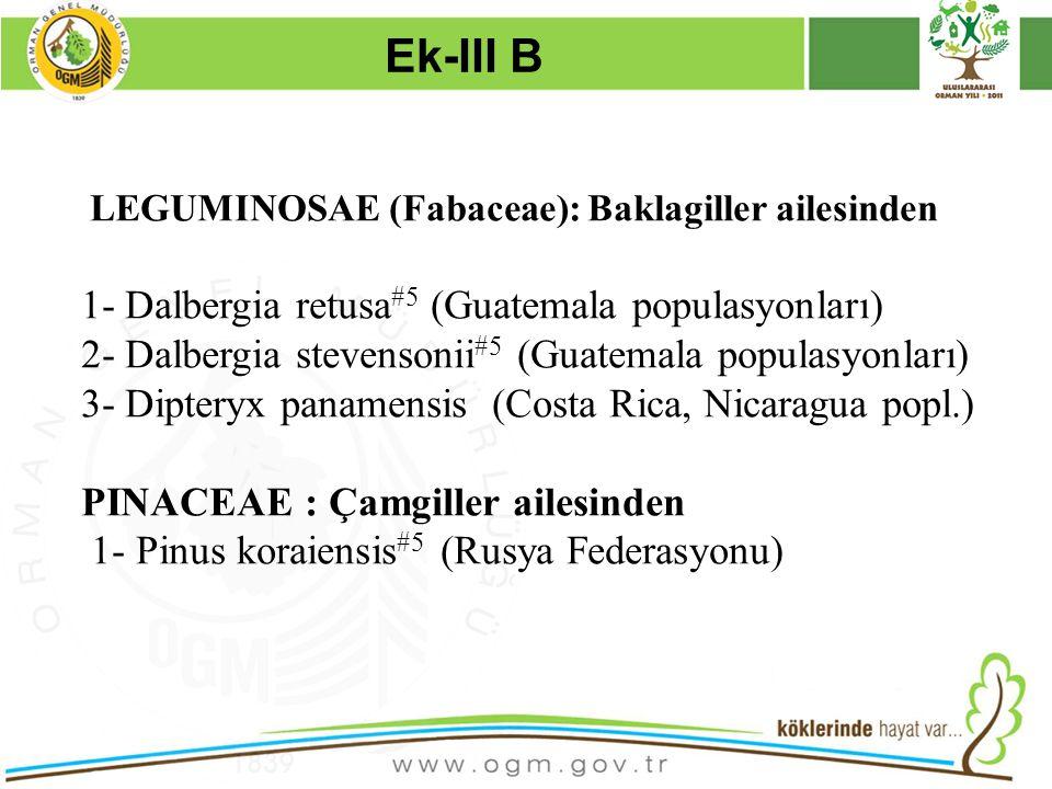 16/12/2010 Kurumsal Kimlik 28 LEGUMINOSAE (Fabaceae): Baklagiller ailesinden 1- Dalbergia retusa #5 (Guatemala populasyonları) 2- Dalbergia stevensoni