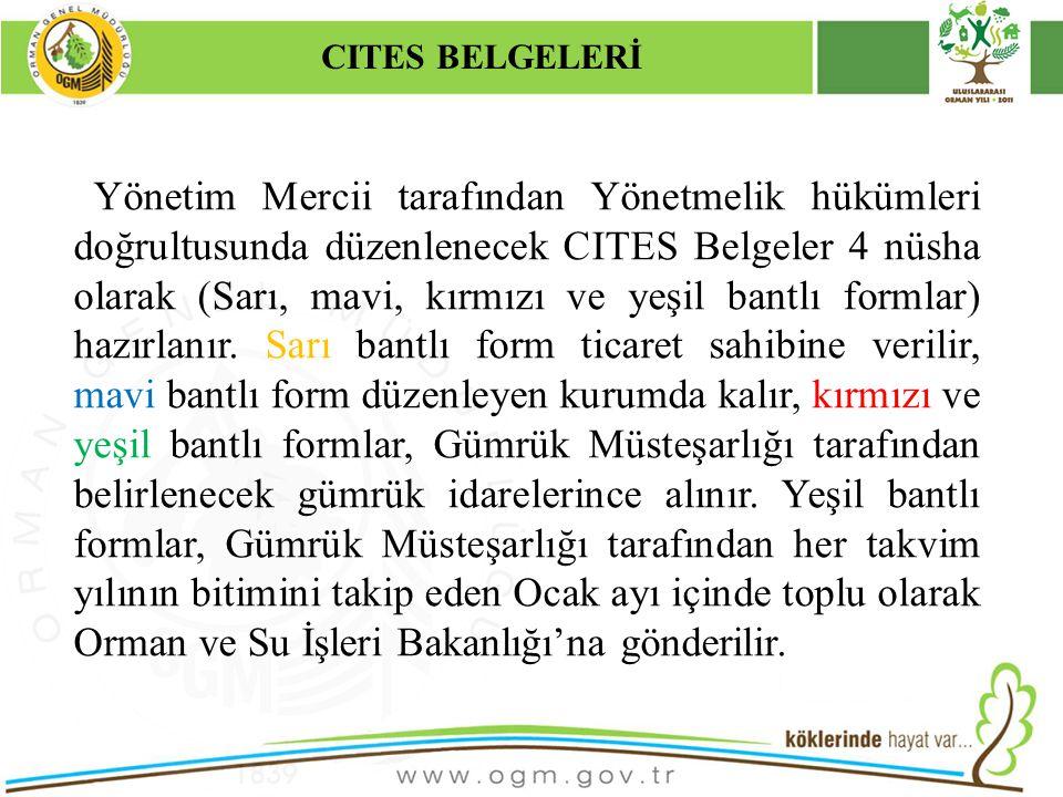 16/12/2010 Kurumsal Kimlik 33 CITES BELGELERİ Yönetim Mercii tarafından Yönetmelik hükümleri doğrultusunda düzenlenecek CITES Belgeler 4 nüsha olarak (Sarı, mavi, kırmızı ve yeşil bantlı formlar) hazırlanır.