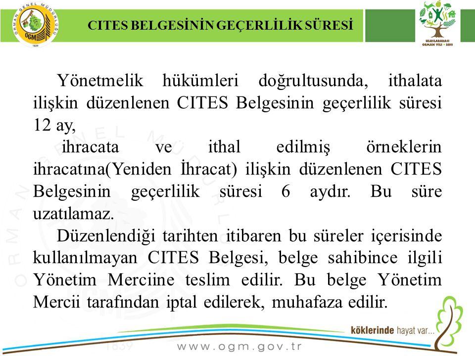 16/12/2010 Kurumsal Kimlik 34 CITES BELGESİNİN GEÇERLİLİK SÜRESİ Yönetmelik hükümleri doğrultusunda, ithalata ilişkin düzenlenen CITES Belgesinin geçe