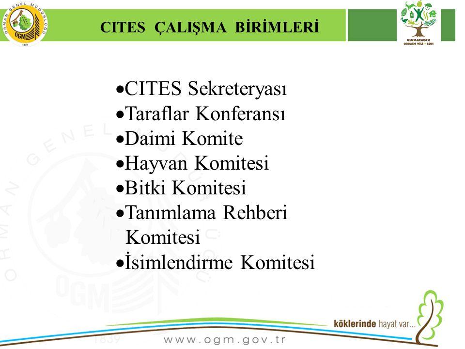 16/12/2010 Kurumsal Kimlik 7  CITES Sekreteryası  Taraflar Konferansı  Daimi Komite  Hayvan Komitesi  Bitki Komitesi  Tanımlama Rehberi Komitesi  İsimlendirme Komitesi CITES ÇALIŞMA BİRİMLERİ