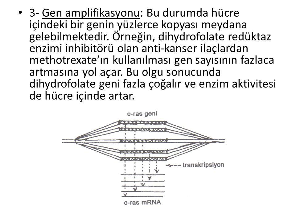 • 3- Gen amplifikasyonu: Bu durumda hücre içindeki bir genin yüzlerce kopyası meydana gelebilmektedir. Örneğin, dihydrofolate redüktaz enzimi inhibitö
