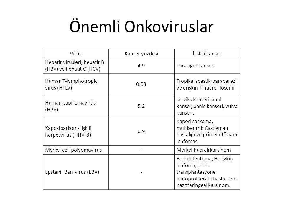 Önemli Onkoviruslar VirüsKanser yüzdesiİlişkili kanser Hepatit virüsleri; hepatit B (HBV) ve hepatit C (HCV) 4.9karaciğer kanseri Human T-lymphotropic