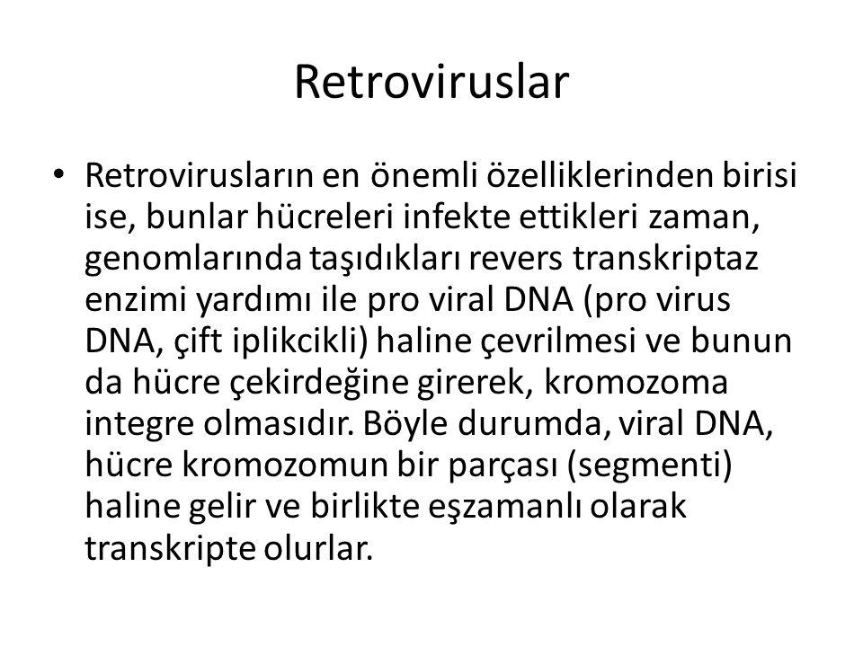 Retroviruslar • Retrovirusların en önemli özelliklerinden birisi ise, bunlar hücreleri infekte ettikleri zaman, genomlarında taşıdıkları revers transk